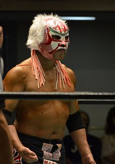 The Great Sasuke Japanese professional wrestler