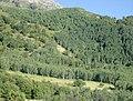 Grove Creek Trail in September - panoramio - photophat (13).jpg