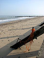 Groynes on the beach - geograph.org.uk - 1034445.jpg