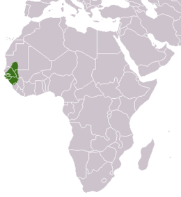 Guinea Baboon area.png