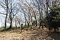 Hakoda Castle kuichigai toraguchi.jpg