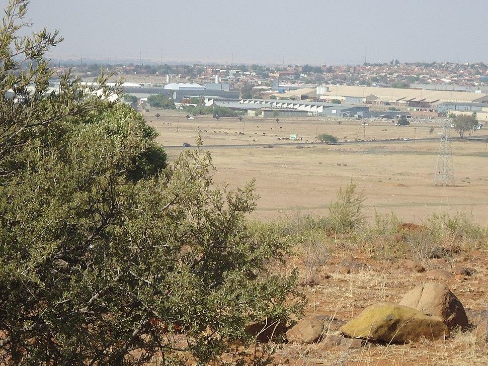 Hamilton, Bloemfontein