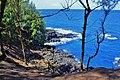 Hanalei, Kauai, Hawaii - panoramio (3).jpg
