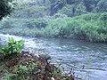 Hashirano, Iwakuni, Yamaguchi Prefecture 741-0073, Japan - panoramio (3).jpg