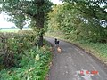 Haw Park Lane, Wakefield. - geograph.org.uk - 54174.jpg