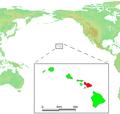 Hawaii Islands - Maui.PNG