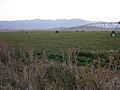Hay Fields near Baker City Oregon.jpg