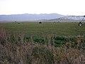 Hay Fields near Baker City Oregon.jpg