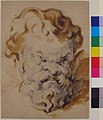 Head of Silenus MET 65.253.jpg