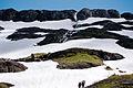 Heliotrope Ridge snowmelt.jpg