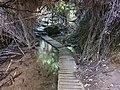 Hidden River 06.jpg