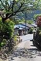 Hikawa, Okutama, Nishitama District, Tokyo 198-0212, Japan - panoramio (1).jpg