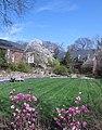 Hillwood Gardens in April (17409830158).jpg