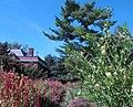 Hillwood Gardens in September (21634284326).jpg