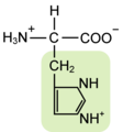 Histidine w functional group highlighted.png