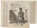 Homo sapiens - Maori, Nieuw-Zeeland - 1868 - Print - Iconographia Zoologica - Special Collections University of Amsterdam - UBA01 IZ19500070.tif