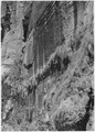 Honeycombed Rock, east wall of Canyon above Zion Stadium, along Narrows Trail. - NARA - 520473.tif