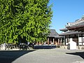 Hongan-ji National Treasure World heritage Kyoto 国宝・世界遺産 本願寺 京都323.JPG