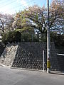 Hoshizaki Castle 015.JPG