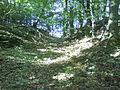 Huinschenburg01.jpg