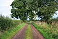 Humber Lane - geograph.org.uk - 251282.jpg