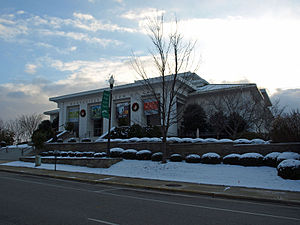 Huntsville Museum of Art Dec10 01.jpg