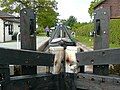 Hurleston Lock No 1, Llangollen Canal, Cheshire - geograph.org.uk - 1324203.jpg