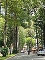 Huyen Tran Cong chua, Ben thanh , q1 hcmvn - panoramio.jpg