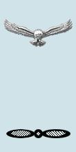 IAF LAC Arm