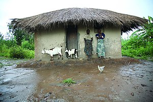 Malawian food crisis - Malawi's agriculture suffers from natural disasters such as floods.