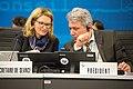 ITU Council 2018 (40802557384).jpg