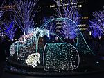 Illumination in front of Hakata Station 20141225.JPG