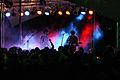 Immergut Bands-Roosevelt266.jpg