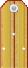 Imperial Russian Army Por 1917 v