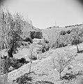 In het landschap van Gilead, Bestanddeelnr 255-5684.jpg