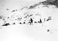 Infanteristen mit Skiern in Feuerlinie - CH-BAR - 3239335.tif