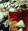Iron Mountain Mine red.jpg