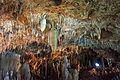 Ishigaki-Cave19s5s4592.jpg