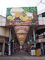 Ishigaki euglena mall 2012.jpg