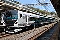 JR East E257-2000 NA-08 Atami Odoriko 20200321.jpg