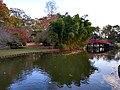 Japanese-style bridge over Lake Biwa, Memphis Botanic Garden.jpg
