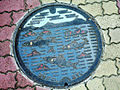 Japanese Manhole Covers (10925297865).jpg