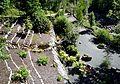 Japanska trädgården.jpg