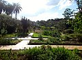 Jardim Botânico Jani Pereira (3).jpg