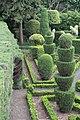 Jardim Botânico da Madeira - IMG 9611.jpg