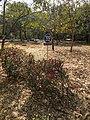 Jawaharlal Nehru University JNU 100m limit sign.jpg