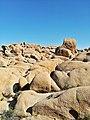 Joshua Tree Nationalpark Skull Rock Trail IMG 20180413 160910.jpg