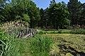 Kámoni Arborétum Szombathely Kamon Arboretum Park 14.jpg