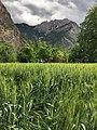 Kalash Valley.jpg