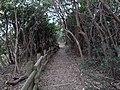 Kami Shima , 神島 観的哨からニワ浜 - panoramio.jpg